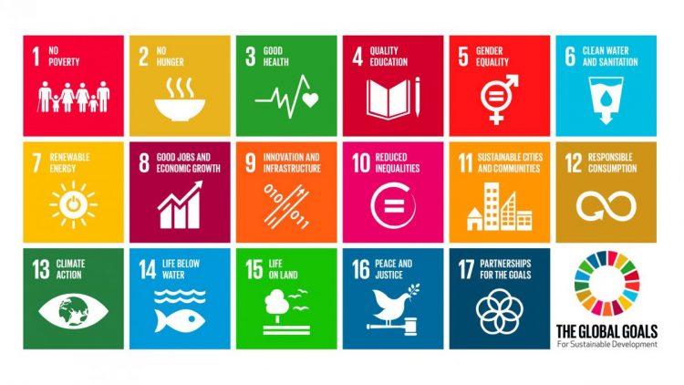Gestos participa em Brasília de planejamento com o Grupo de Trabalho da Agenda 2030